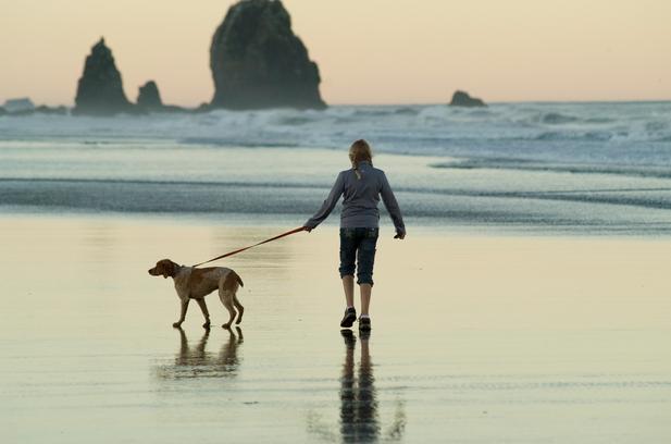 Savoir promener son chien