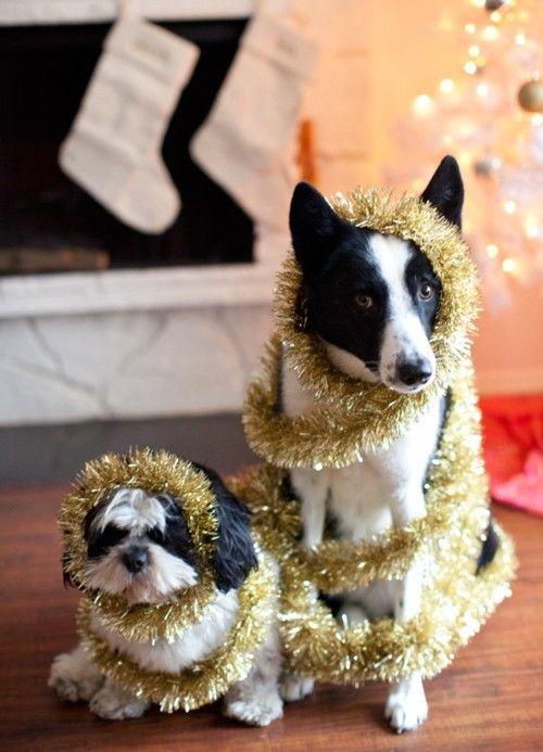 christmas tinsels