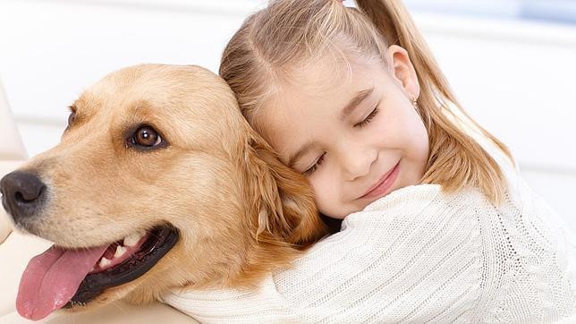 Top 10 Les Meilleurs Chiens Pour Les Enfants