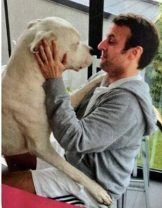 Figaro le chien d'Emmanuel Macron
