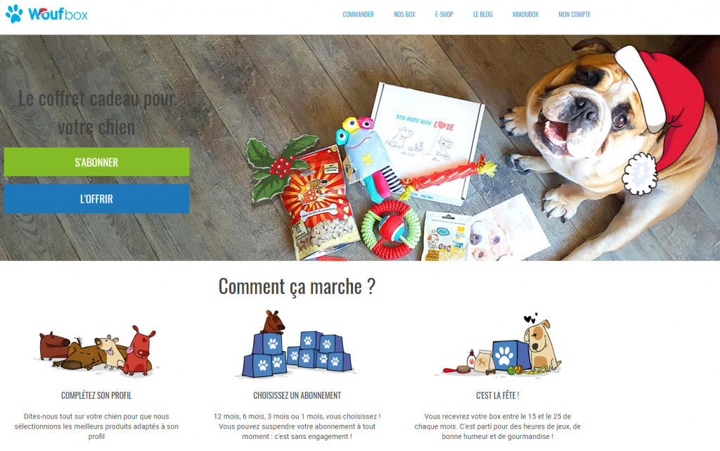 idée cadeaux noël chien box mensuelle woufbox