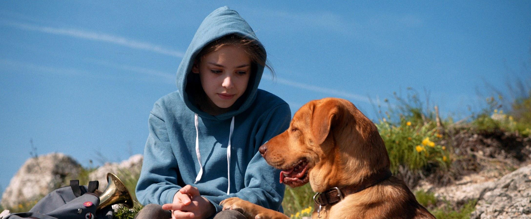 films chiens
